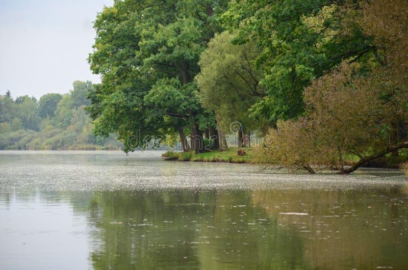 Trebon-Teich früh morgens vor dem Sturm stockfotos