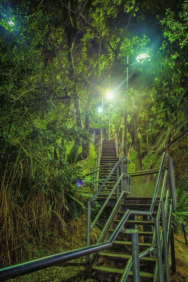 Treden bij nacht stock afbeelding