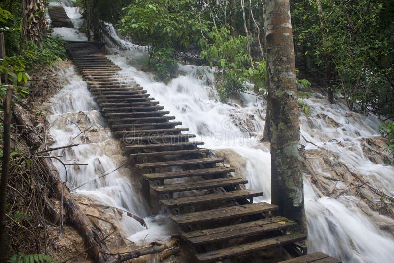 Treden bij Tat Kuang Si-waterval royalty-vrije stock afbeeldingen
