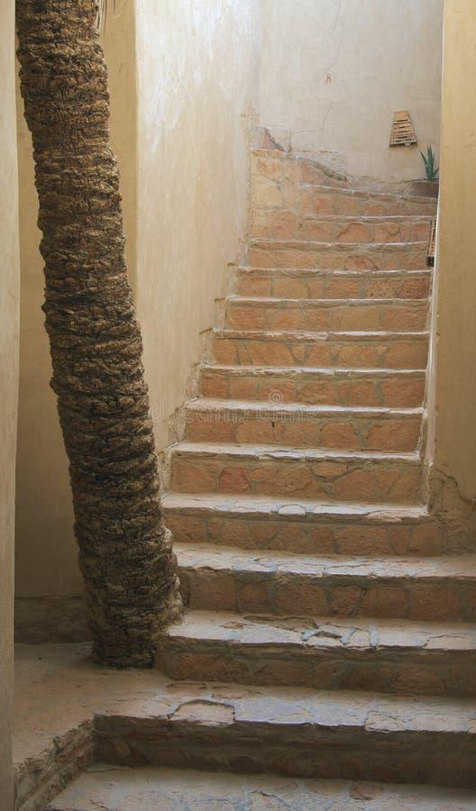 Treden van Siwa Egypte stock foto's