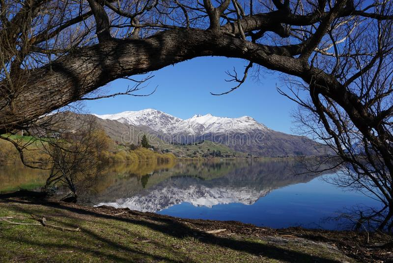 Tree构筑的湖和山 免版税库存照片
