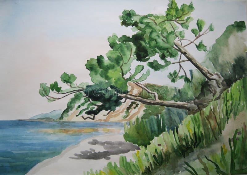 Download Tree stock illustration. Illustration of branch, midday - 35095234