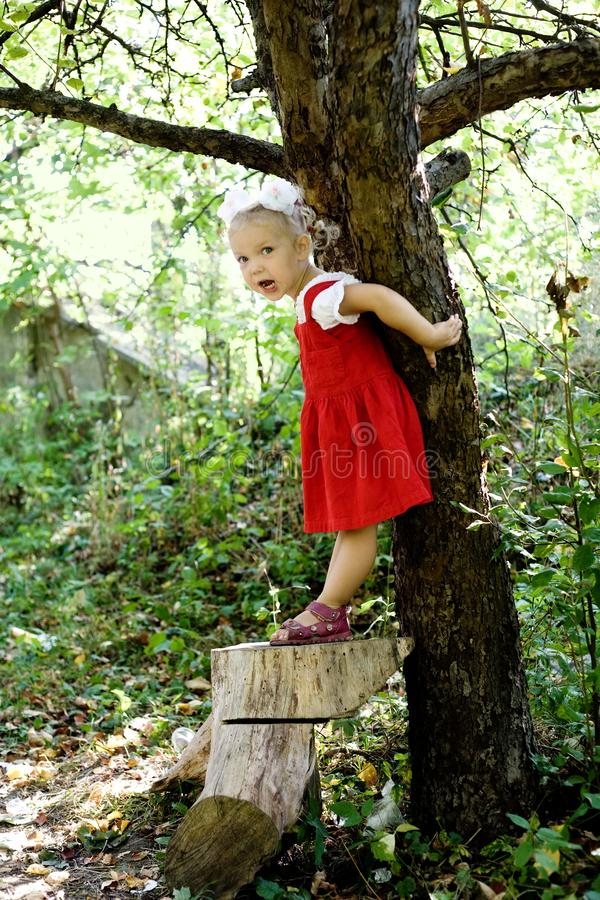 Download At the tree stock photo. Image of childhood, preschool - 10746198