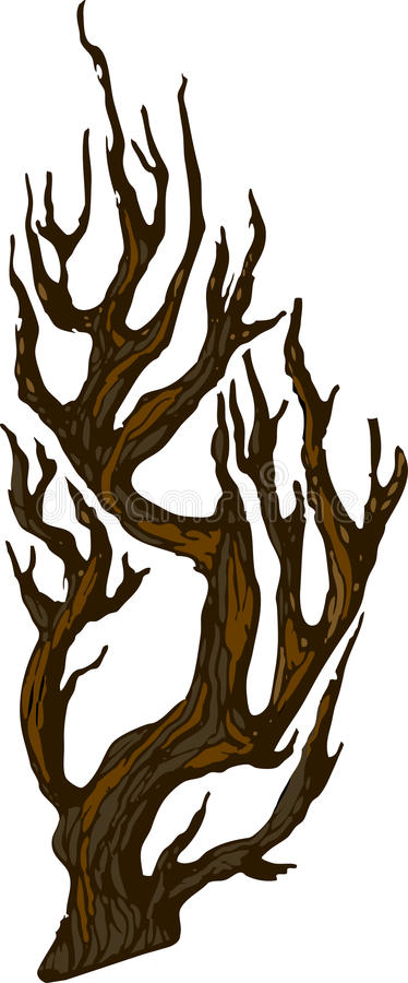 Download Tree stock illustration. Illustration of colored, large - 11040201