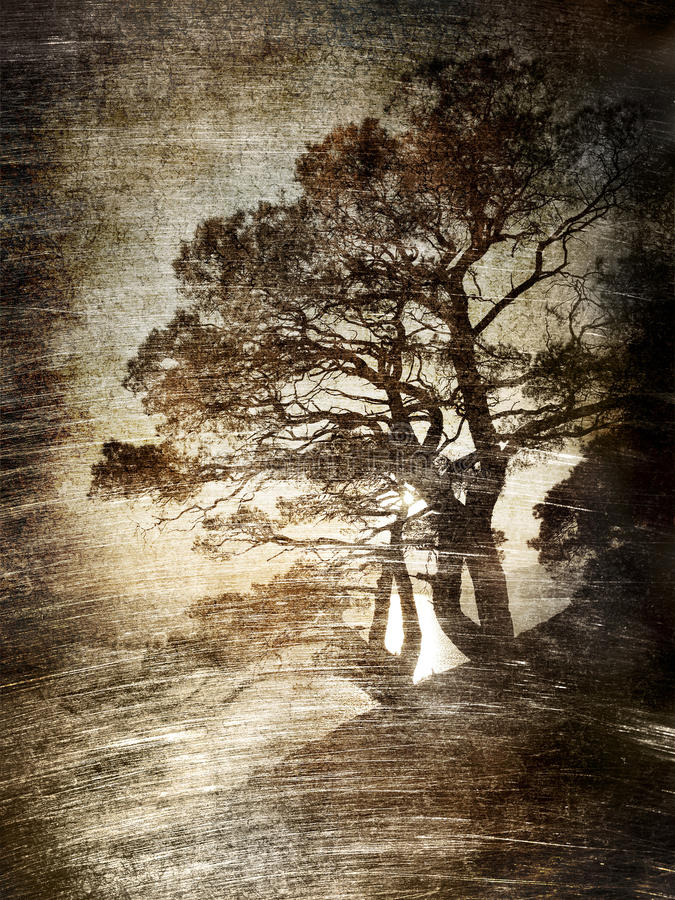 Tree. royalty free illustration