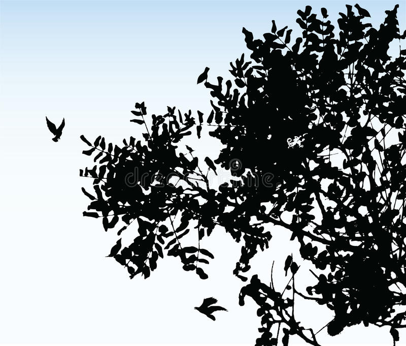 Tree. Illustration of some branches of a tree royalty free illustration