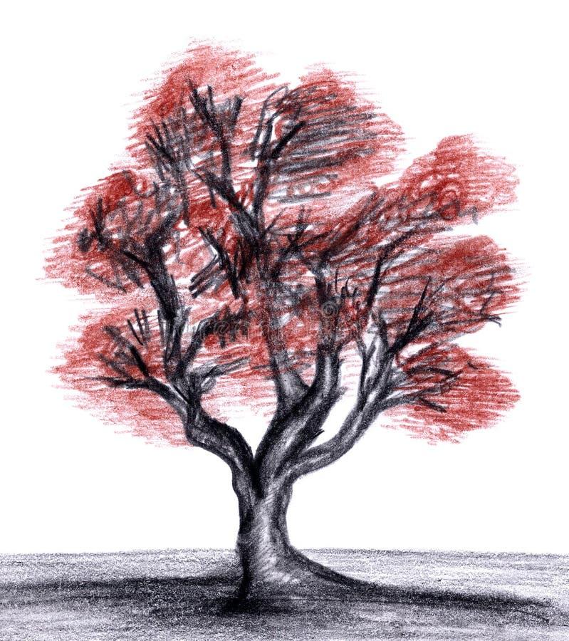 Tree royalty free illustration