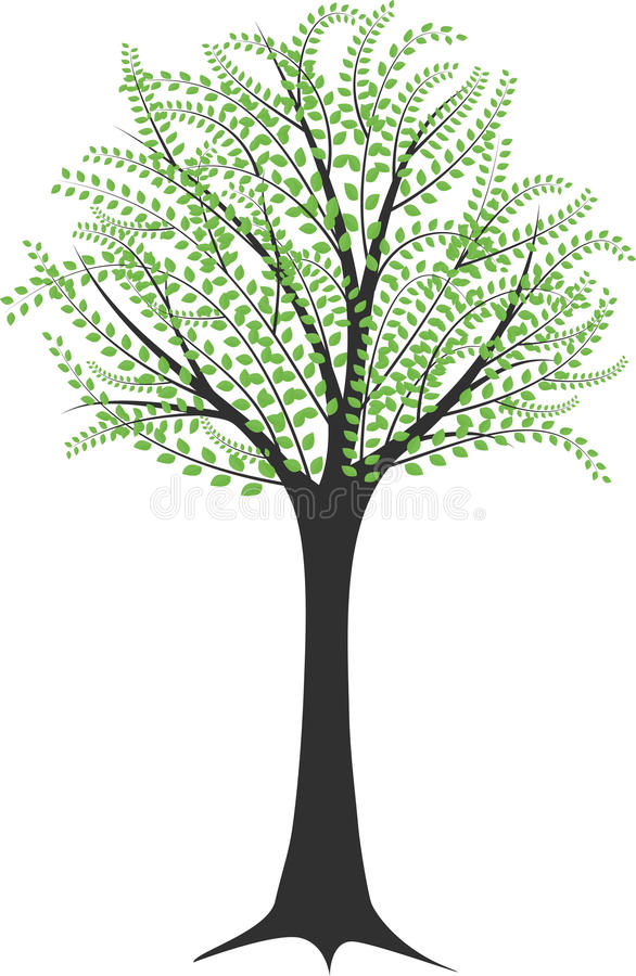 Download Tree stock vector. Image of natural, leafy, life, green - 28410812