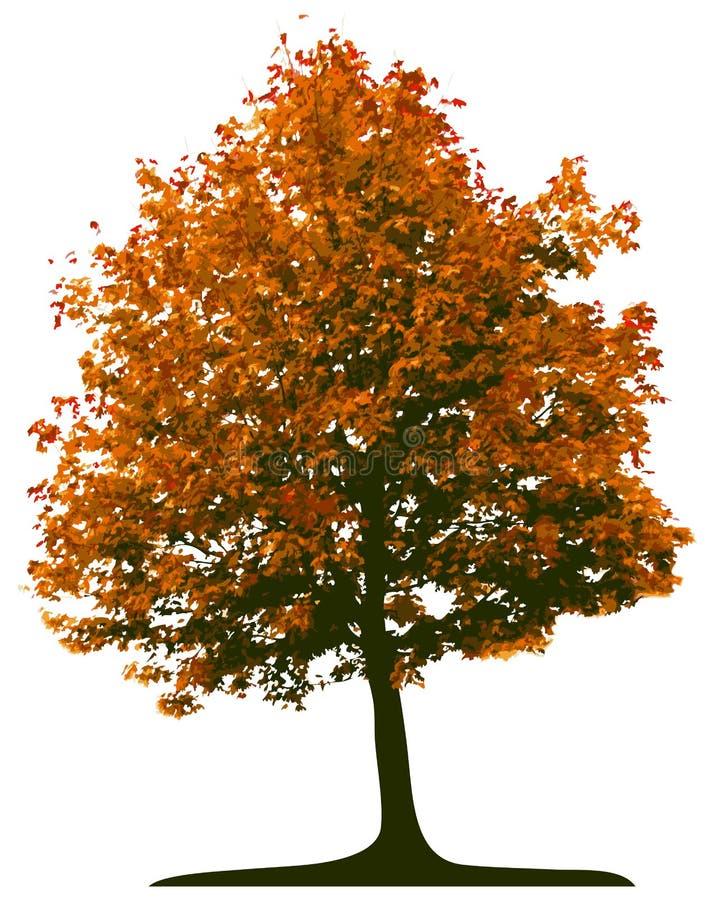 Free Tree Royalty Free Stock Image - 3302456