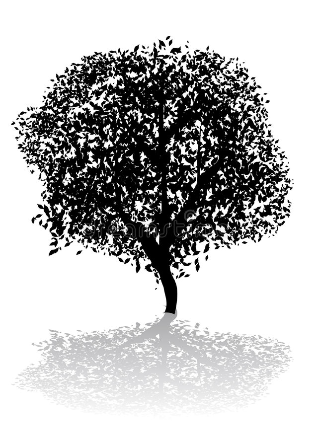 Tree. Abstract vector silhouette illustration of a tree and its shadow vector illustration