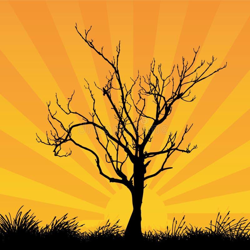 tree royaltyfri illustrationer