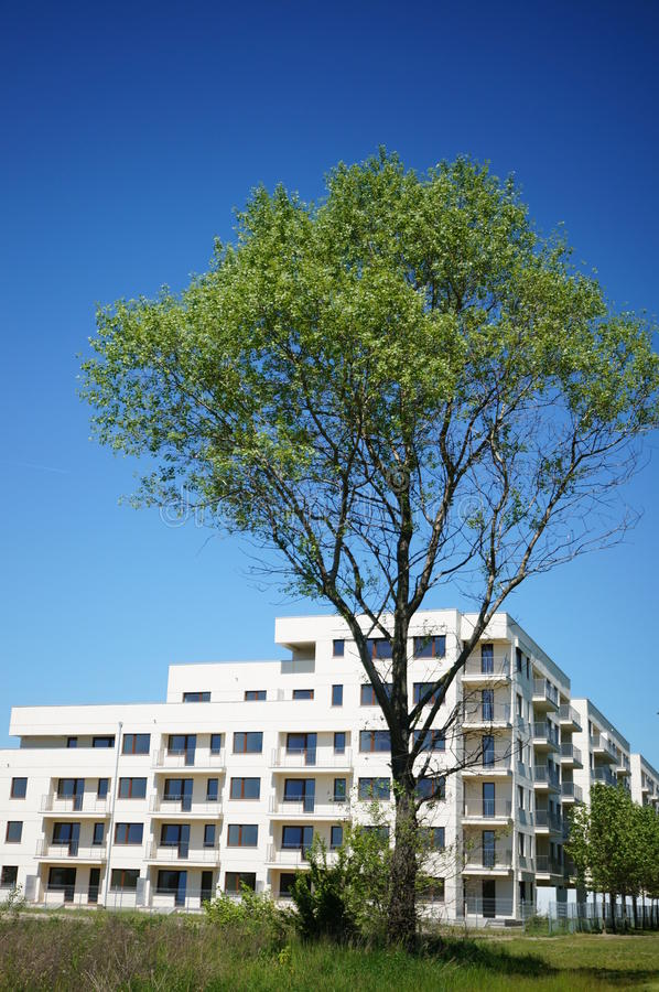 Tree and apartment building stock photo