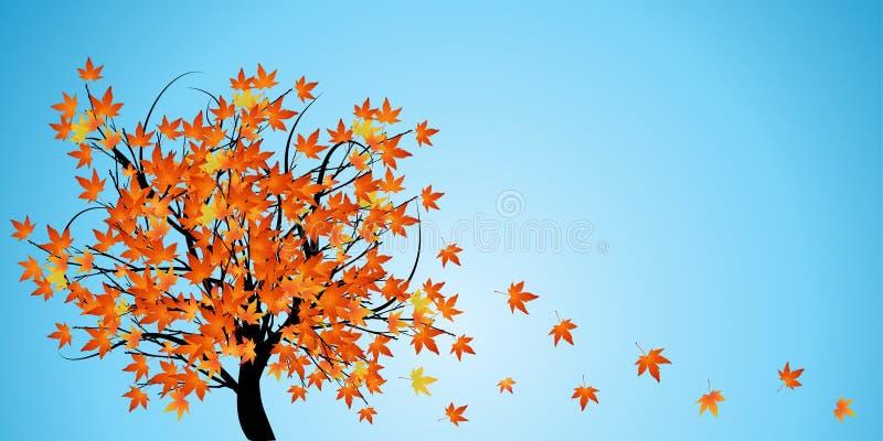 tree with autumn leaves stock illustration