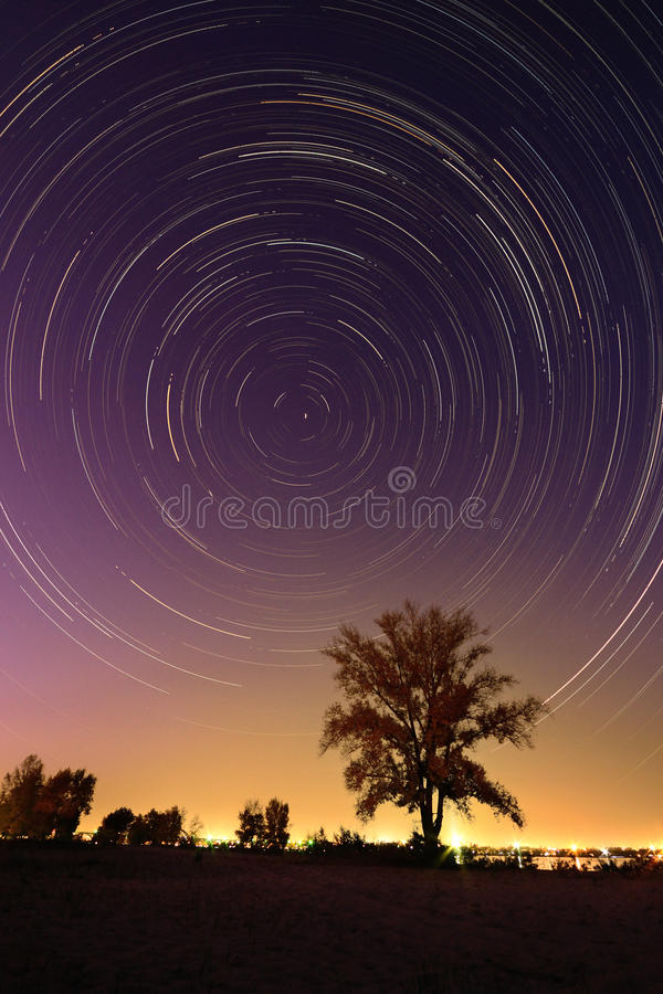 Tree background at night with startrail. Image of a isolated tree on a hill with a blue background at night with startrail royalty free stock images