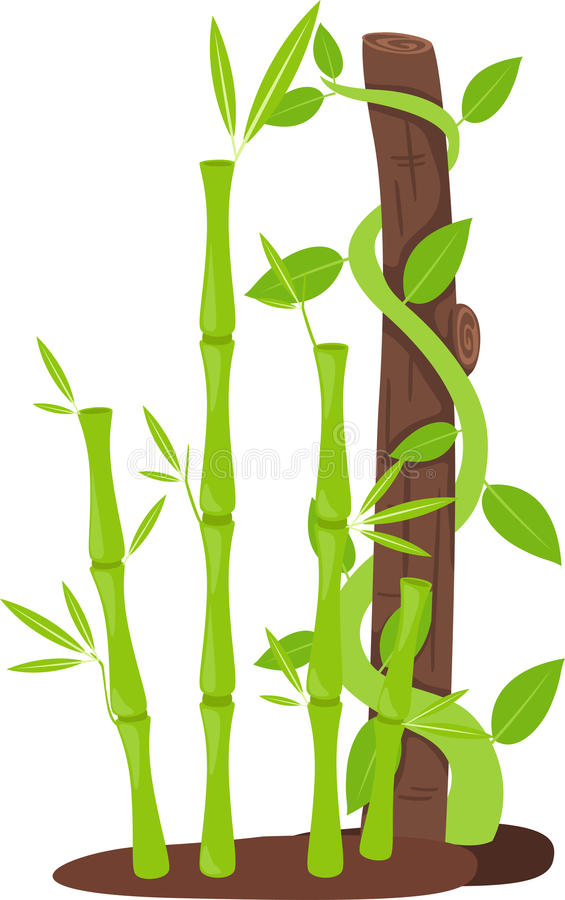 Download Tree with bamboo stock vector. Image of illustration - 33815051