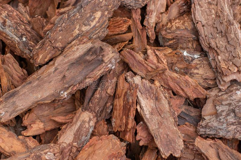 Tree bark natural background wallpaper backdrop. Brown natural pieces of sliver of wood bark texture stock images