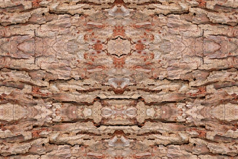 Tree bark texture pattern. wood rind for background stock images