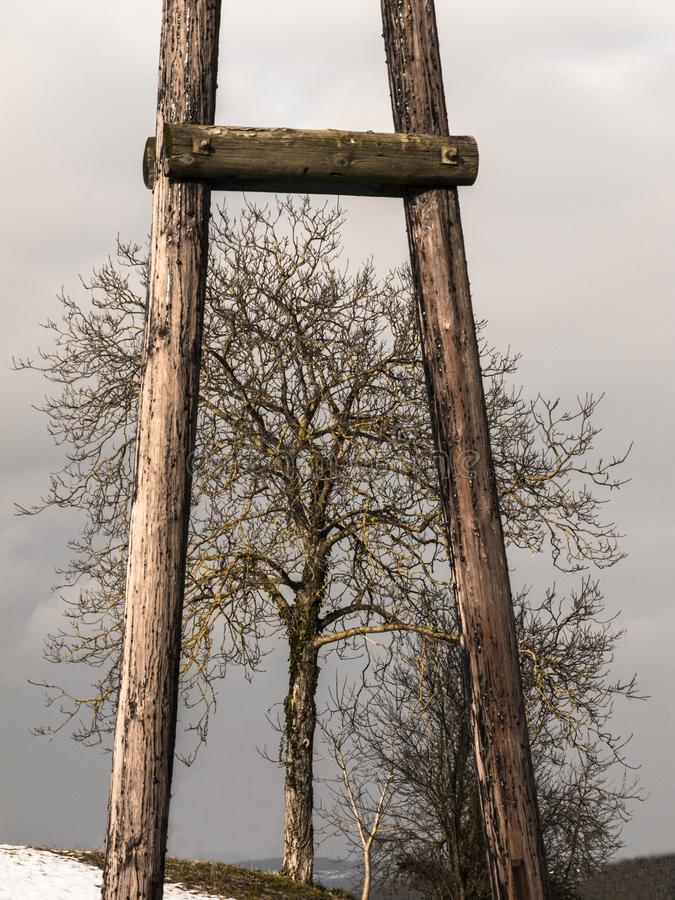 A tree behind an utility pole. Tree behind an utility pole in the south of Austria stock images