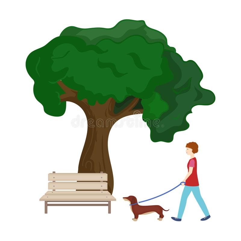 Tree and bench, woman walks a pet in the park. Pet ,Dog care single icon in cartoon style vector symbol stock. Tree and bench, woman walks a pet in the park. Pet royalty free illustration
