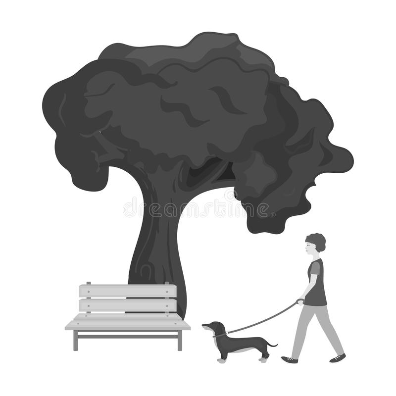 Tree and bench, woman walks a pet in the park. Pet ,Dog care single icon in monochromt style vector symbol stock. Tree and bench, woman walks a pet in the park royalty free illustration
