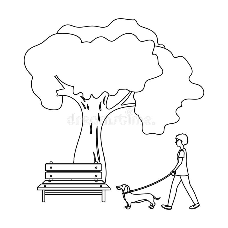 download tree and bench woman walks a pet in the park pet dog