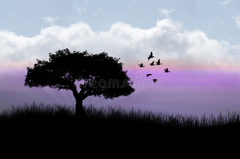 Tree with birds flying stock photos