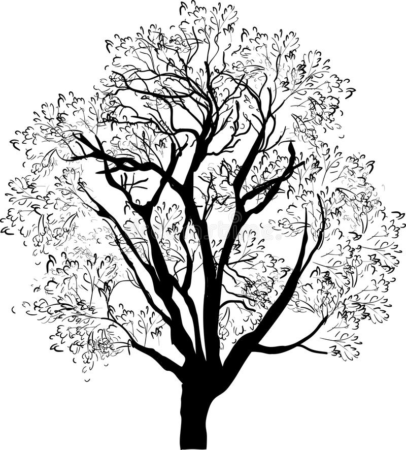 Tree black sketch isolated on white vector illustration