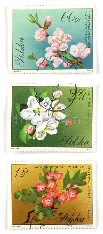 Tree blossom collectible post. Collectible stamps from Poland. Set with blooming trees stock photography