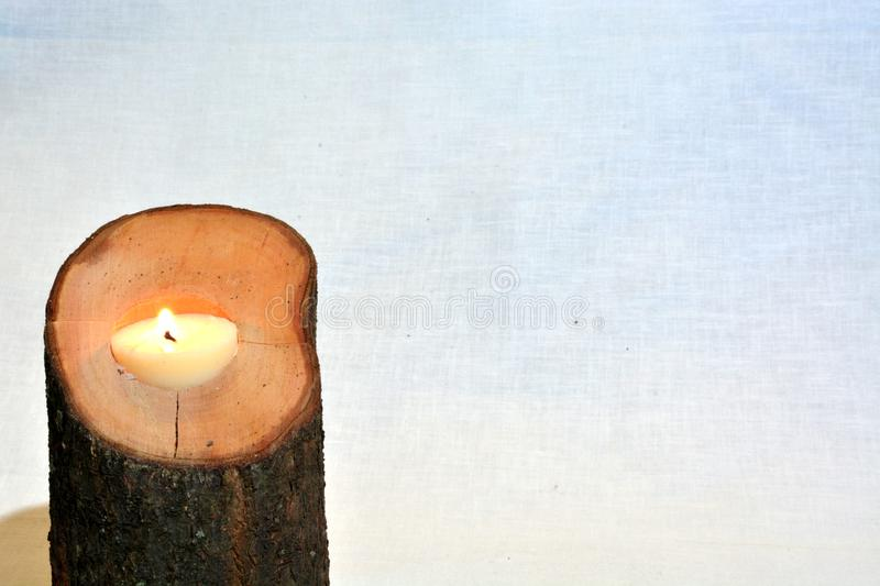 Tree branch candlestick stock photography