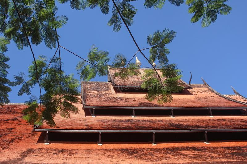 Tree branch in foreground and a traditional mossy Thai layered roof with tiered umbrellas against blue sky as background stock photos