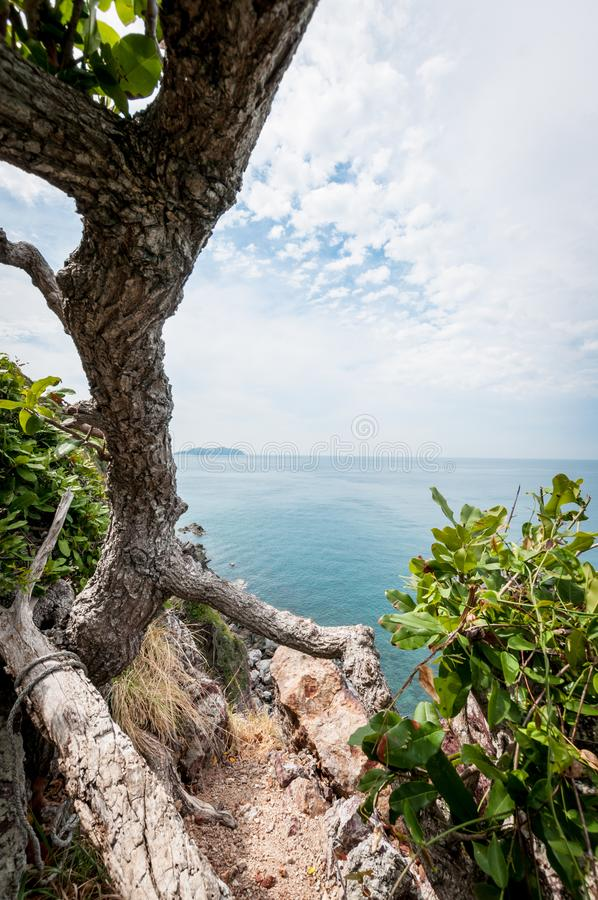 Tree branch and ocean, landscape of Laem Sing hill scenic point. Tree branch and ocean landscape of Laem Sing hill scenic point royalty free stock photography