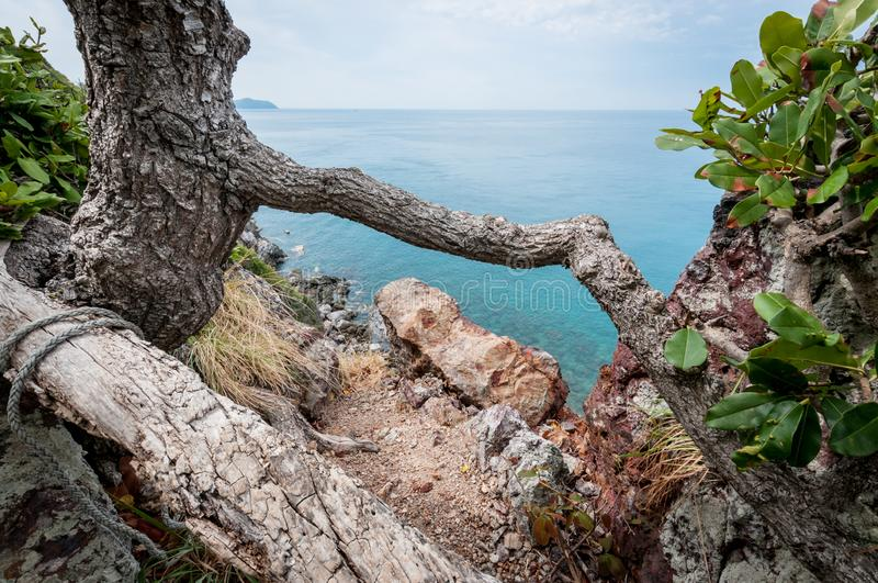 Tree branch and ocean, landscape of Laem Sing hill scenic point. Tree branch and ocean landscape of Laem Sing hill scenic point stock photos