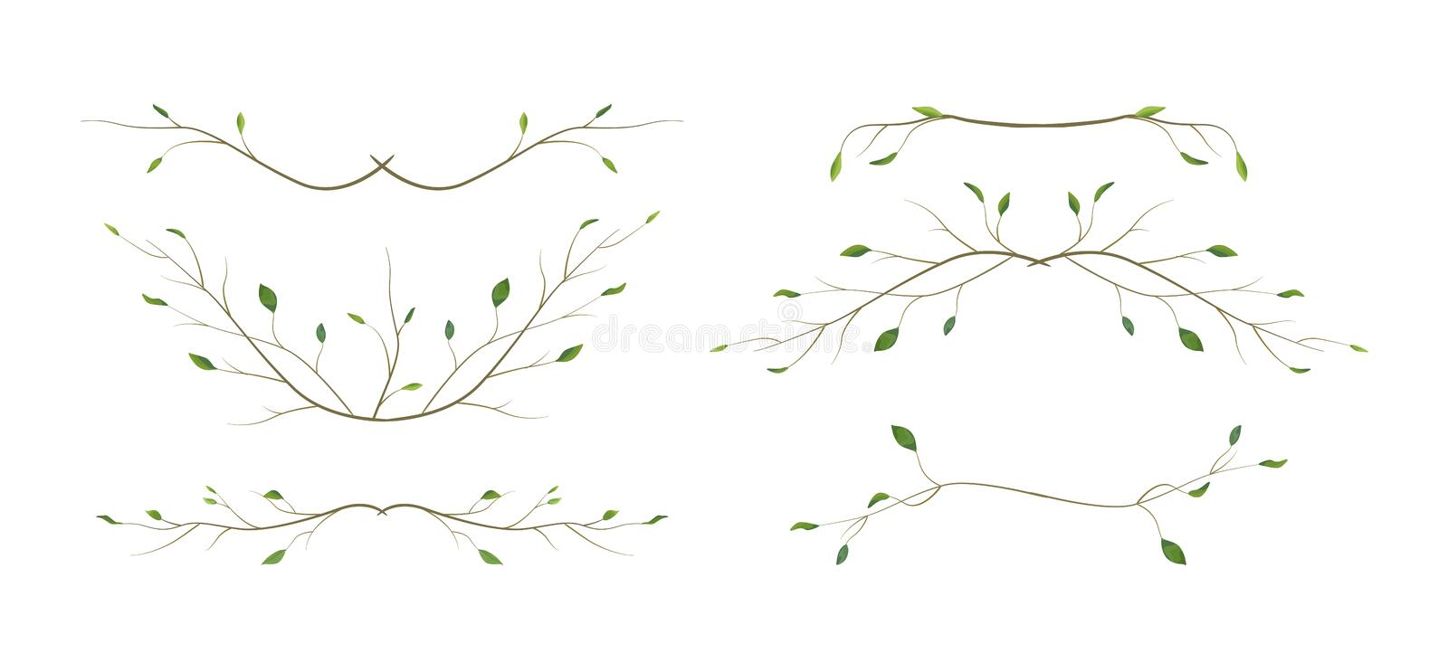 Tree branch twig designer art different foliage natural branches, leaves anniversary text page divider elements watercolor style s stock illustration