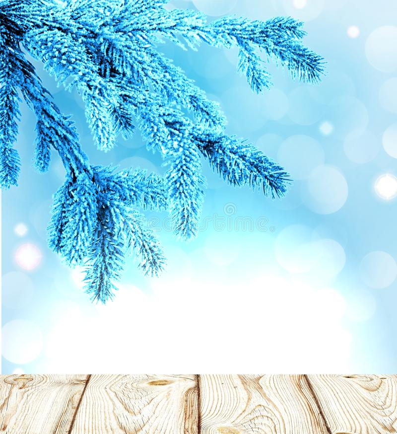 The tree branches in blue frost and wood surface. On the soft winter background. Great winter image is suitable for many ideas. There is plenty of space for royalty free stock photography