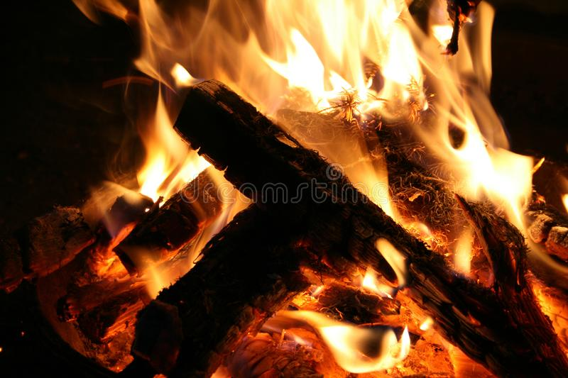 Tree branches burning in a bonfire on the ground. The bonfire of the branches burns on nature. Night stock images