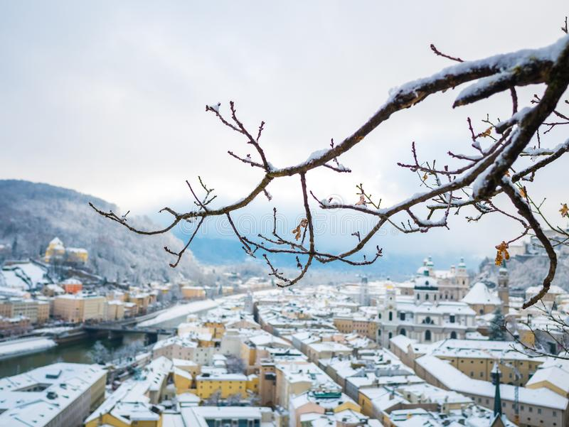 Tree branches in the foreground with salzburg cityscape river and fortress royalty free stock photo
