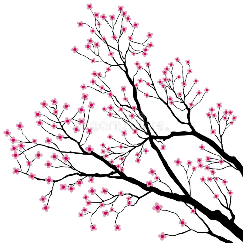 Tree Branches with Pink Flowers vector illustration