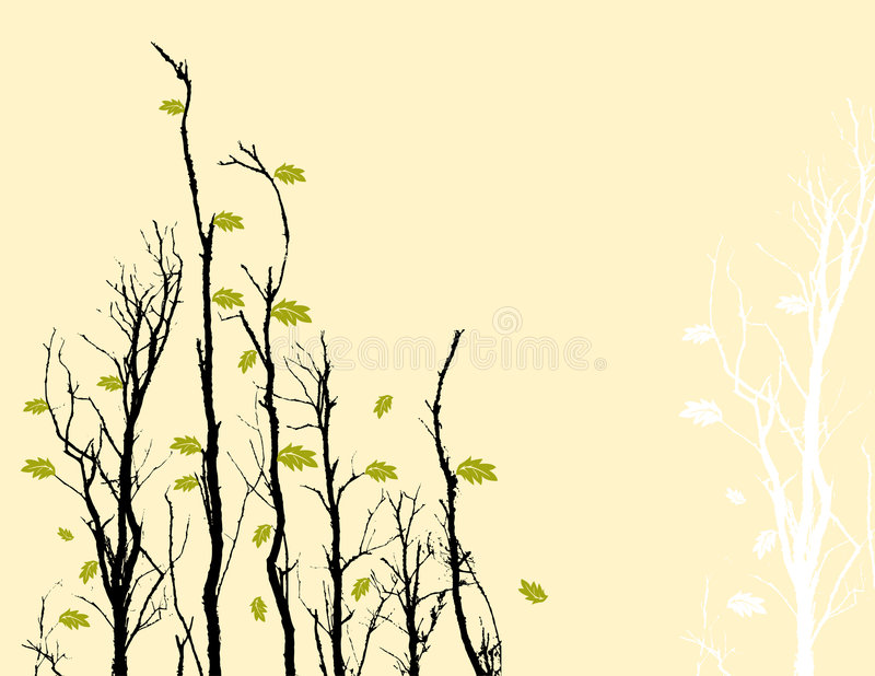 Tree branches and sky royalty free illustration