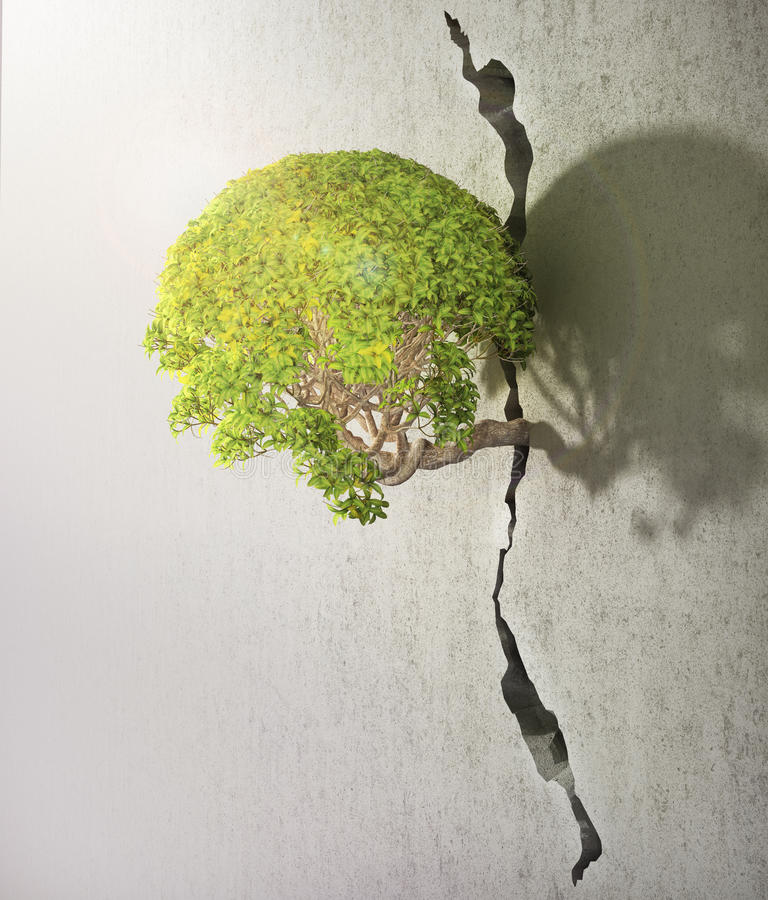 Tree breaks free. Good concept for freedom and success concept stock photo
