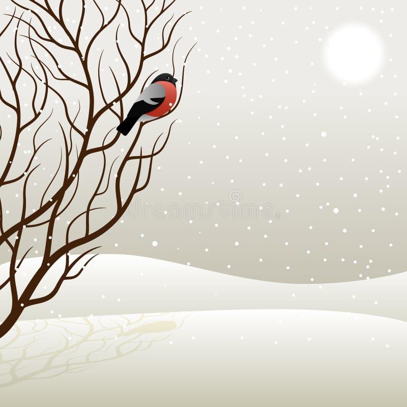 Tree and bullfinch. Vector illustration vector illustration