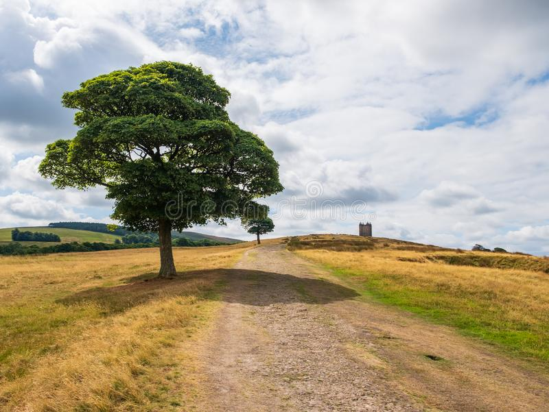 Tree and The Cage tower in the distance, Peak District, UK. Tree and The Cage tower of the National Trust Lyme in the distance in the Peak District, Cheshire, UK stock photo
