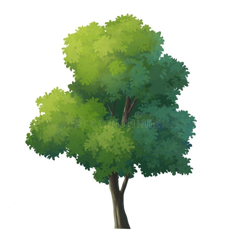 Tree vector illustration