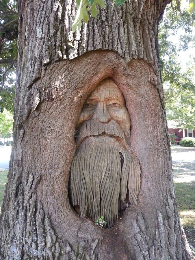 Tree Carving of man foto de stock royalty free