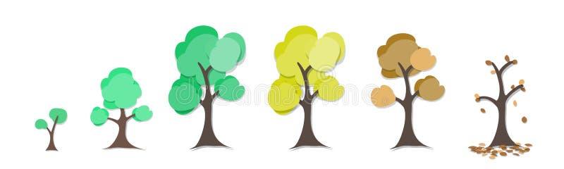 Tree circle of life graphic vector illustration