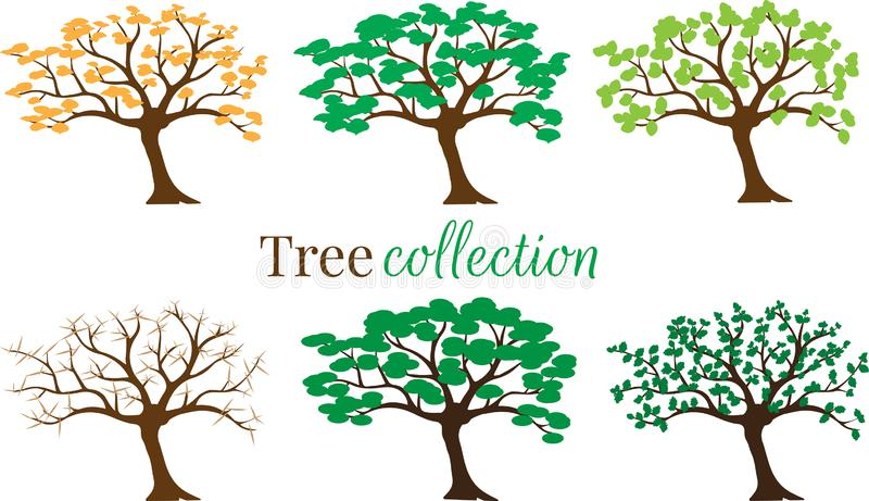 Tree Collection Vector isolated on white background, Set with six trees in different weather seasons. Label, logo, symbol stock illustration