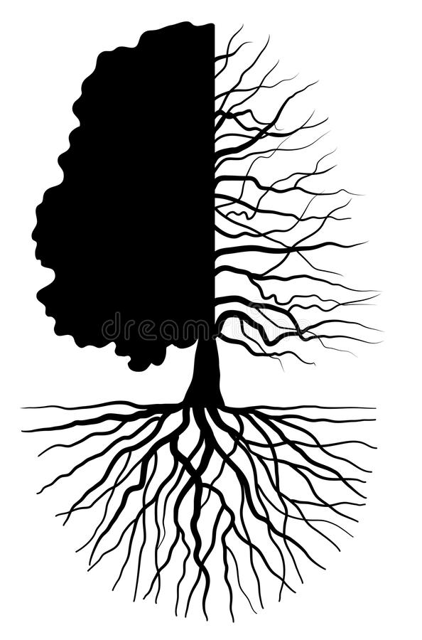 Tree concept royalty free stock photography