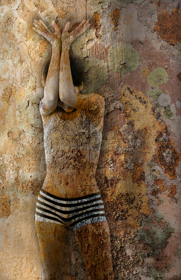 Tree concept girl with bark skin royalty free stock photos