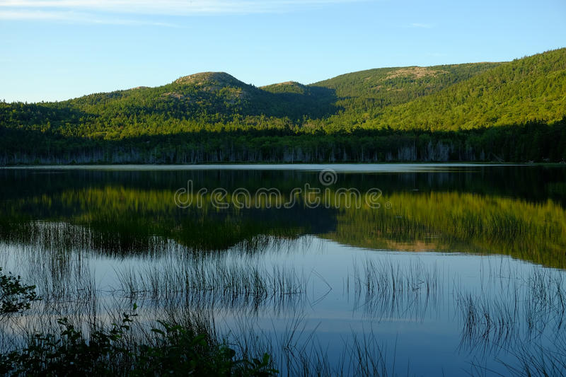 Tree covered mountain reflected in calm waters stock photos