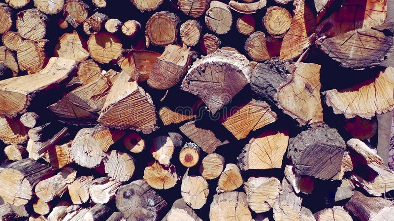 Tree cuts, birch and oak firewood close-up royalty free stock images