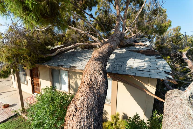 Tree Damage to Roof after Major Monsoon. Tree damages a roof after a major monsoon in Phoenix, AZ royalty free stock images